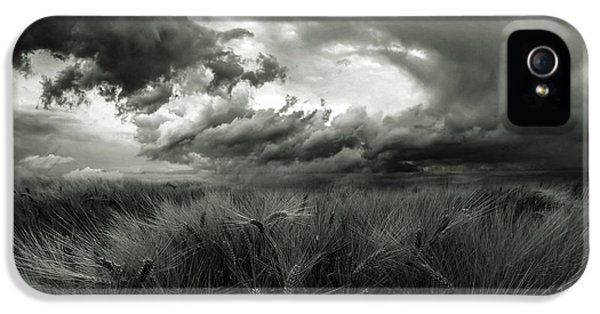After The Storm IPhone 5 Case
