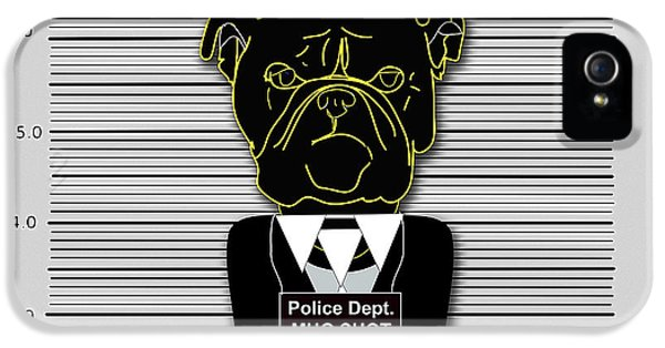 Bad Dog IPhone 5 / 5s Case by Marvin Blaine