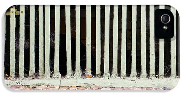 Dungeon iPhone 5 Case - Bars by Tom Gowanlock