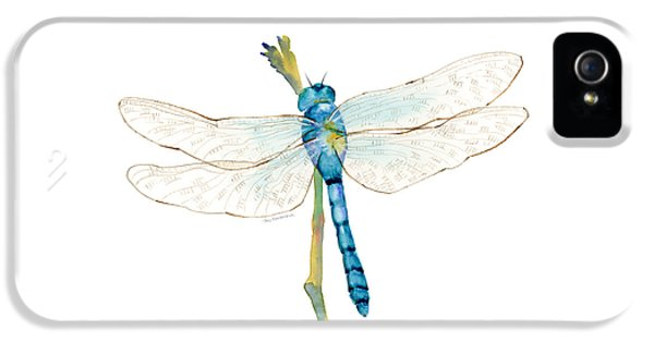 Insect iPhone 5 Case - Blue Dragonfly by Amy Kirkpatrick