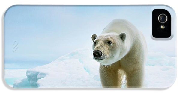 Close Up Of A Standing Polar Bear IPhone 5 Case by Peter J. Raymond