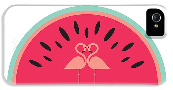 Flamingo Watermelon IPhone 5 Case by Susan Claire