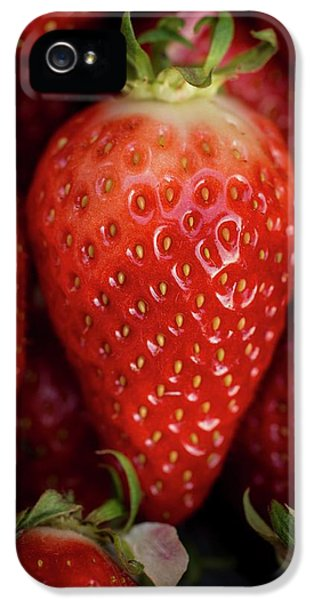 Gariguette Strawberries IPhone 5 Case by Aberration Films Ltd