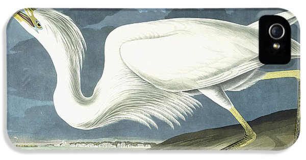 Great White Heron IPhone 5 Case by John James Audubon
