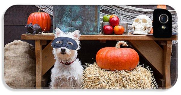 Happy Halloween IPhone 5 Case by Edward Fielding