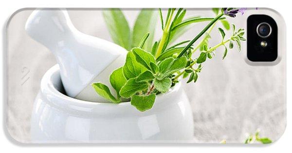 Healing Herbs IPhone 5 Case by Elena Elisseeva