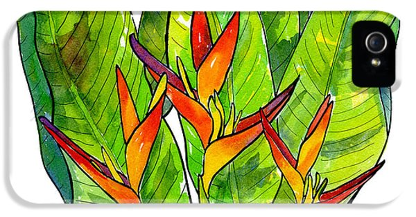 Heliconia IPhone 5 Case by Diane Thornton