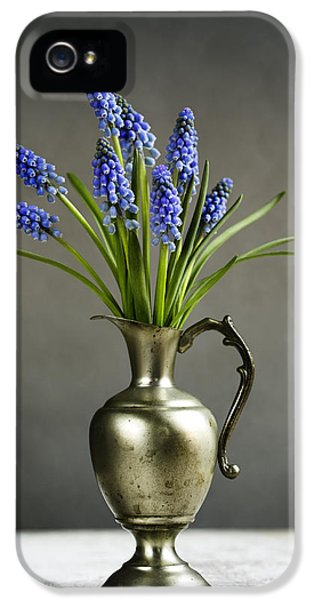 Hyacinth Still Life IPhone 5 / 5s Case by Nailia Schwarz
