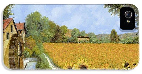 Sunflower iPhone 5 Case - Il Mulino E I Girasoli by Guido Borelli