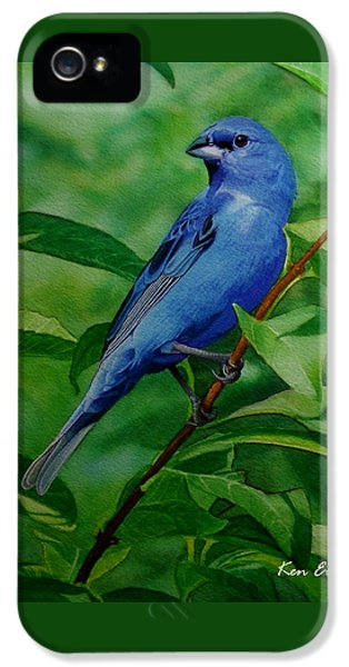 Indigo Bunting IPhone 5 / 5s Case by Ken Everett