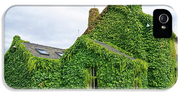 Ivy Growth On A Building IPhone 5 Case