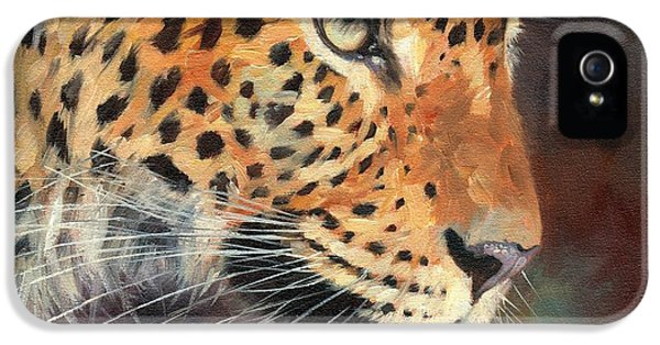 Leopard IPhone 5 Case by David Stribbling