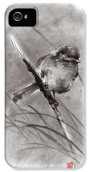 Little Bird On Branch  IPhone 5 Case by Mariusz Szmerdt
