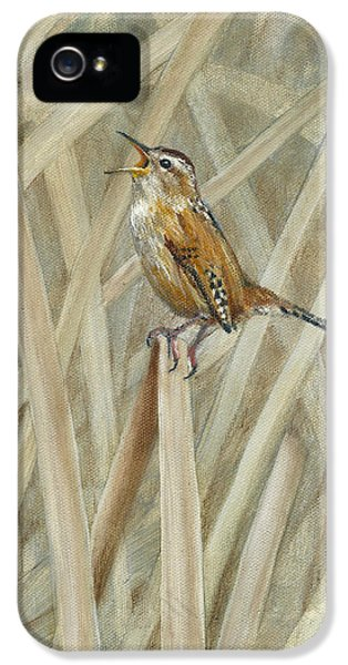 Wren iPhone 5 Case - Marsh Melody by Dreyer Wildlife Print Collections