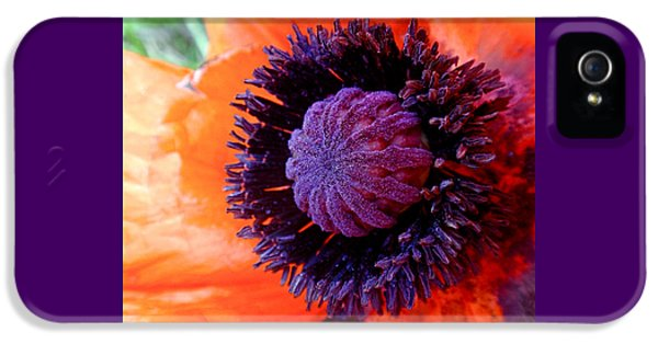 Poppy IPhone 5 Case