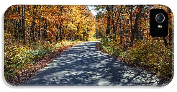 Road In Fall Forest IPhone 5 Case