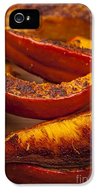 Roasted Pumpkin IPhone 5 Case by Elena Elisseeva