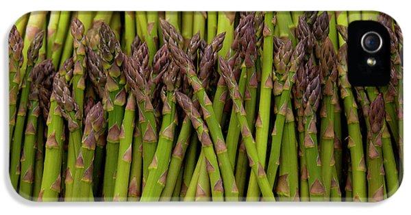 Scotts Asparagus Farm, Marlborough IPhone 5 / 5s Case by Douglas Peebles