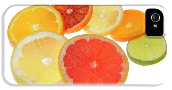 Slices Of Citrus Fruit IPhone 5 / 5s Case by Cordelia Molloy