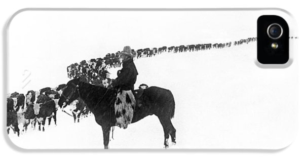 Cow iPhone 5 Case - Wintertime Cattle Drive by Charles Belden