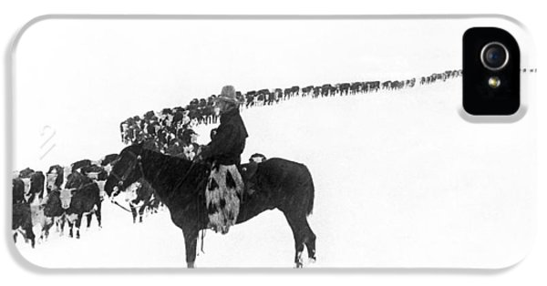 Cow iPhone 5 Case - Wintertime Cattle Drive by Underwood Archives  Charles Belden