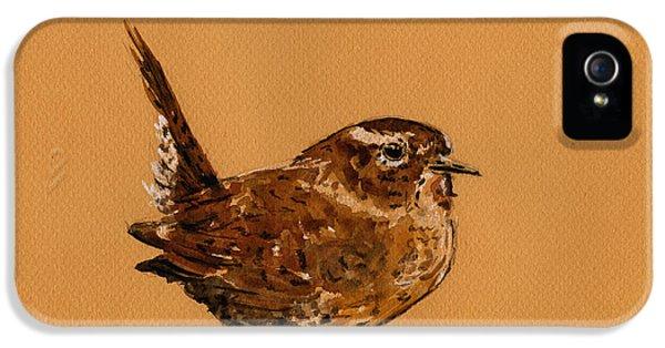 Wren Bird IPhone 5 Case by Juan  Bosco