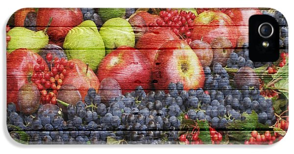 Fruit IPhone 5 Case by Joe Hamilton