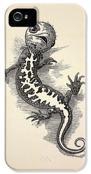 1863 Kingsley Waterbabies Human Newt IPhone 5 / 5s Case by Paul D Stewart