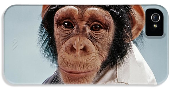 1970s Close-up Face Chimpanzee Looking IPhone 5 Case