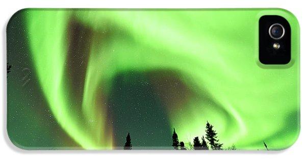 Aurora Borealis Over Trees IPhone 5 Case by Dr P. Marazzi