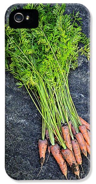 Carrot iPhone 5 Case - Fresh Carrots From Garden by Elena Elisseeva