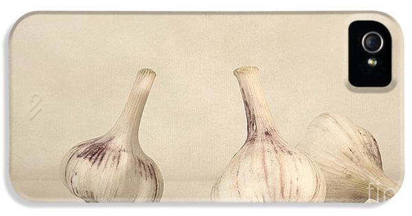Still Life iPhone 5 Case - Fresh Garlic by Priska Wettstein