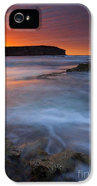 Kangaroo iPhone 5 Case - Pennington Dawn by Mike  Dawson