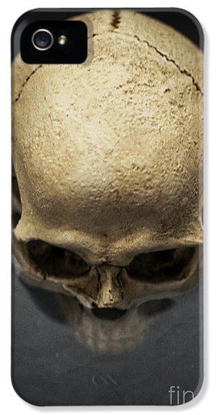 Skull  IPhone 5 Case by Edward Fielding
