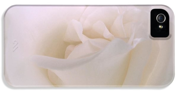 Softness Of A White Rose Flower IPhone 5 Case