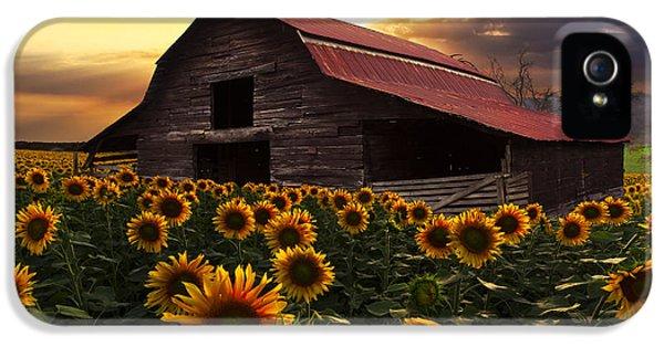 Sunflower Farm IPhone 5 / 5s Case by Debra and Dave Vanderlaan