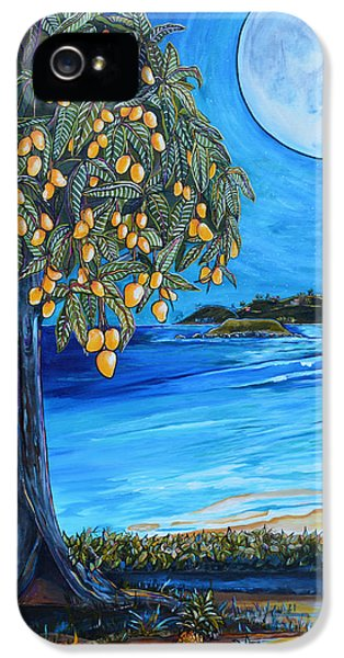 The Mango Tree IPhone 5 Case by Patti Schermerhorn