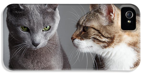 Two Cats IPhone 5 / 5s Case by Nailia Schwarz