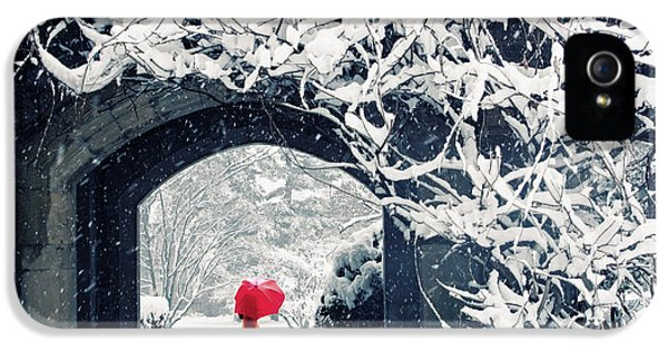 Winter's Lace IPhone 5 Case