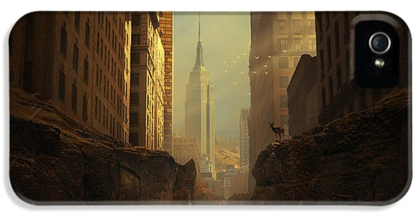 Empire State Building iPhone 5 Case - 2146 by Michal Karcz