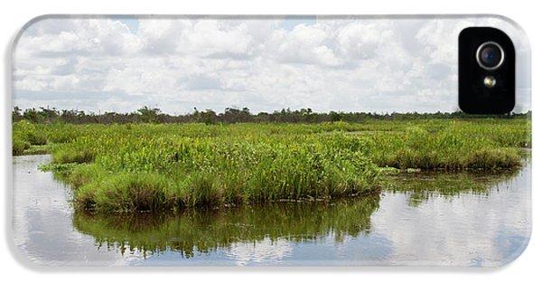 La, Lafitte, Airboat Swamp Tour IPhone 5 Case