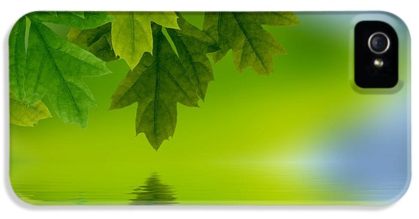 Leaves Reflecting In Water IPhone 5 Case by Aged Pixel