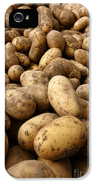 Potatoes IPhone 5 / 5s Case by Olivier Le Queinec