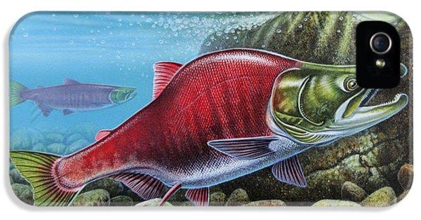 Sockeye Salmon IPhone 5 Case by JQ Licensing