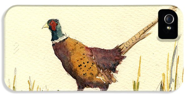 Pheasant iPhone 5 Case - Pheasant by Juan  Bosco