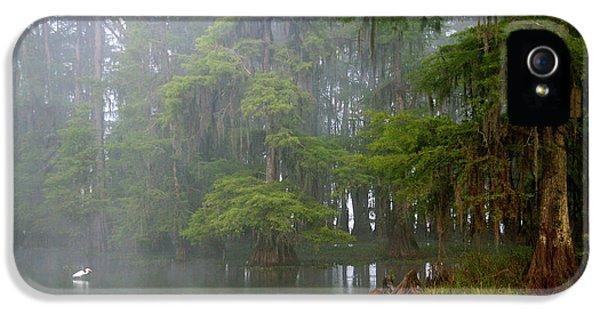 Usa, Louisiana, Lake Martin IPhone 5 Case