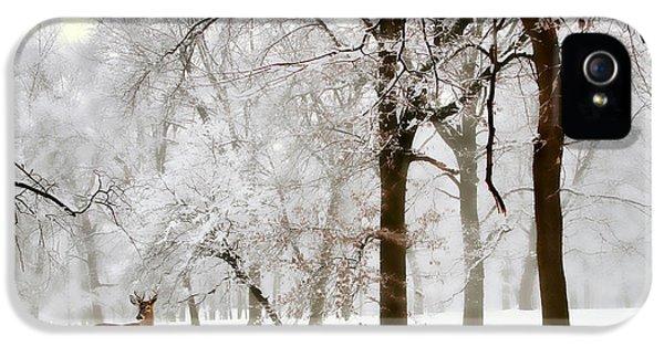 Winter's Breath IPhone 5 Case