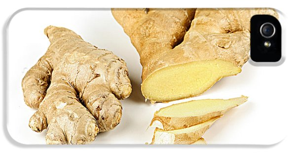 Ginger Root IPhone 5 Case