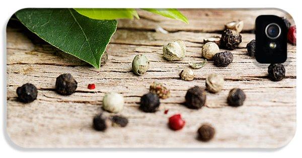 Kitchen Herbs IPhone 5 Case by Nailia Schwarz