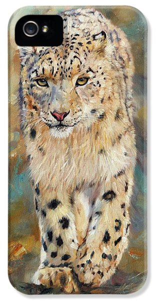 Snow Leopard IPhone 5 Case by David Stribbling
